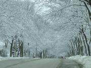 Milw winter