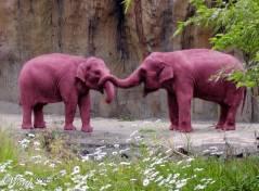 pink-elephants