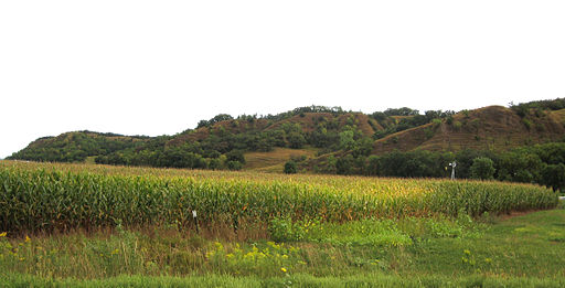 Loess_hills. By Bill Whittaker. Wikimedia